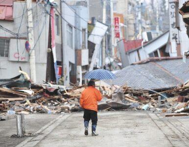Nowy bilans kataklizmu w Japonii: zginęło 8649 osób