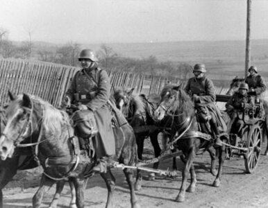 Weterani Waffen SS przeszli ulicami Rygi. Przy sowieckiej muzyce