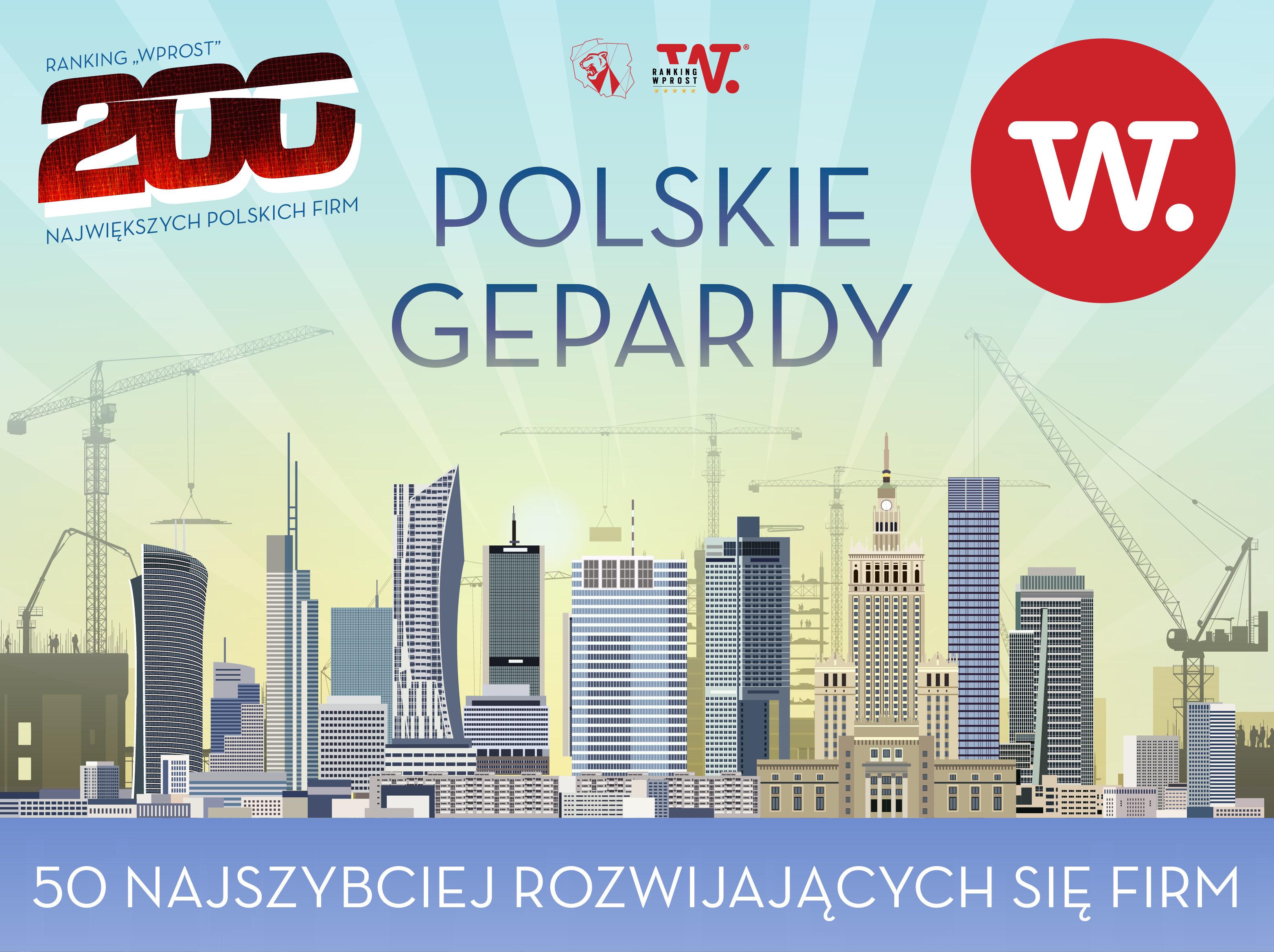 Polskie Gepardy - Ranking 50 najszybciej rozwijających się firm