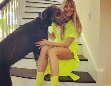 Heidi Klum jest chora. Modelka mówi, że nie mogła zrobić testu na...