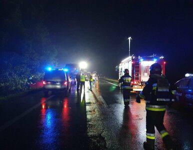 Tragiczny wypadek na drodze krajowej numer 88. Dziewięć osób nie żyje