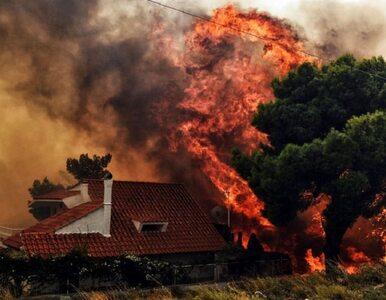 Tragedia Greków kontra tragedia Indonezyjczyków