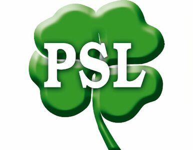 Hofman: PiS zajmuje się wsią, PSL radami nadzorczymi