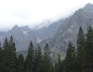 Zamieszanie wokół obowiązku noszenia maseczek w Tatrach. Jest stanowisko...