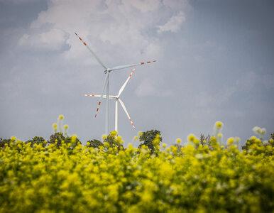 """Nagroda """"Wprost. Zielone Serce 2021"""" dla TAURONA za inwestycje..."""