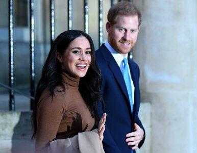 Psy Harry'ego i Meghan przewieziono do Kanady. Para książęca chce tam...