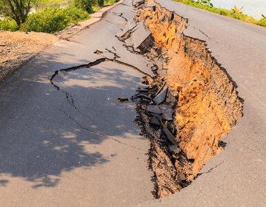 """Trzęsienie ziemi w Albanii. Polscy turyści wracają do kraju.""""Cały..."""