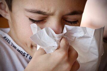 Alergia (zdj. ilustracyjne)