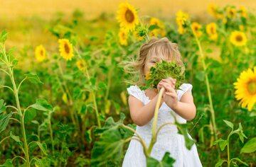 Alergie sezonowe mogą dokuczać nawet latem. Jakie rośliny pylą w lipcu?