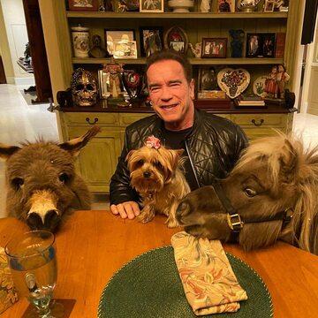 Arnold Schwarzenegger w towarzystwie swoich zwierząt