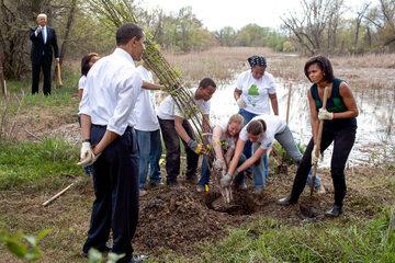 Barack Obamy z żoną nadzorujący sadzenie młodego drzewa. Na drugim planie Donald Trump z siekierą
