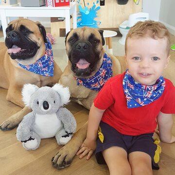 Chłopiec i jego przyjaciele