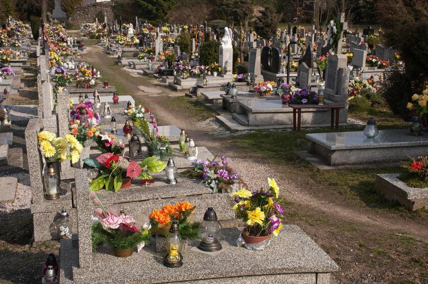 Cmentarz (zdj. ilustracyjne)