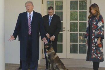 Donald i Melania Trump z psem Conanem