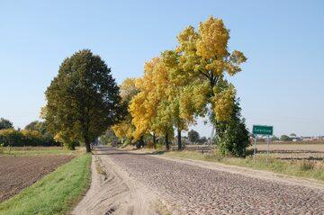 Droga do Żelechowa