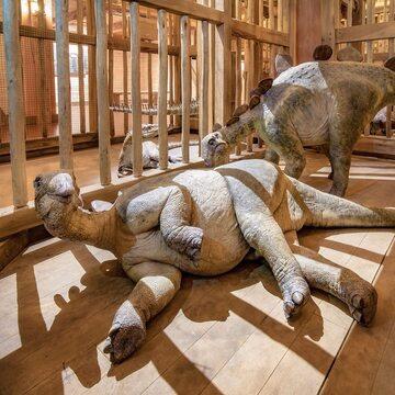Eksponaty z parku rozrywki Ark Encounter