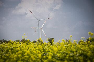 Farma wiatrowa Taurona