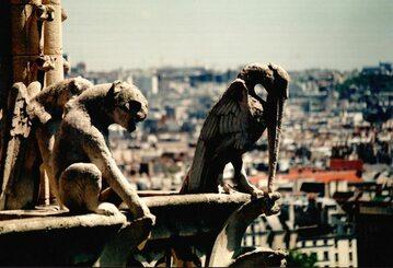 Gargulce w katedrze Notre Dame