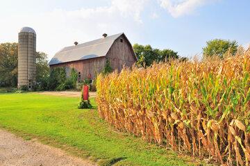 Gospodarstwo rolne, zdjęcie ilustracyjne
