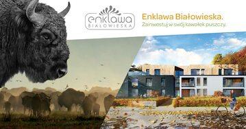 Grafika promująca inwestycję w Puszczy Białowieskiej