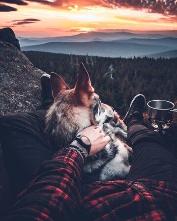 Honza Rehacek i jego pies