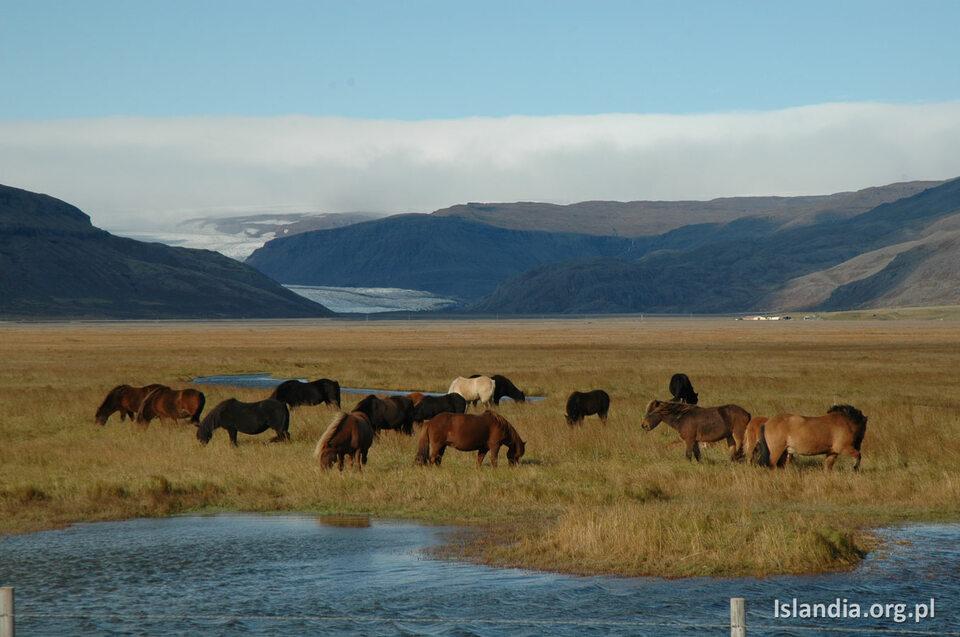 Islandia bez tłumu turystów – taka okazja może się nie powtórzyć