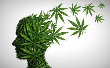 Jaki wpływ na psychikę ma marihuana?