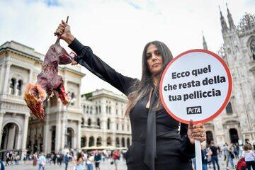 Jeden z protestów PETA przeciwko noszeniu naturalnych futer