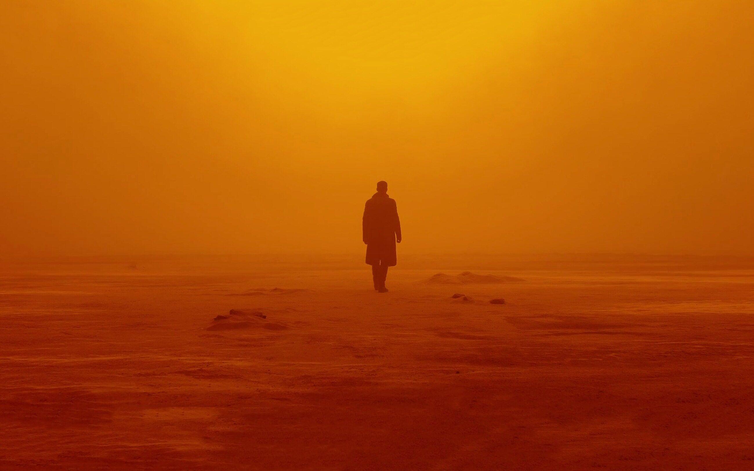 "kadr z filmu ""Blade Runner 2049"" (2017)"