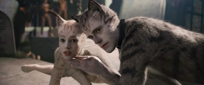 "Kadr z filmu ""Koty"""