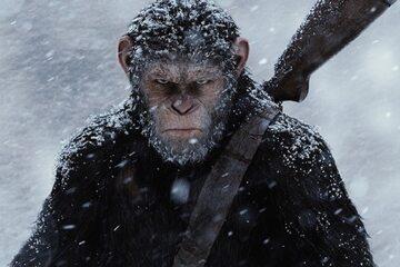 """Kadr z filmu """"Wojna o planetę małp"""" (2017)"""