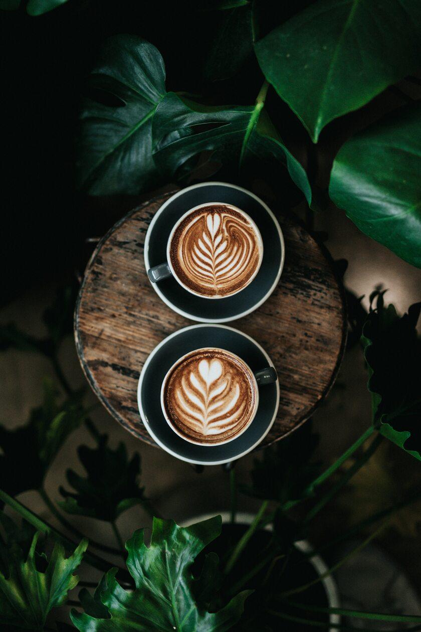 Kawa, zdjęcie ilustracyjne