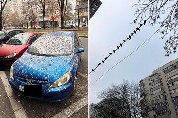 Kiedy zaparkujesz samochód w nieodpowiednim miejscu