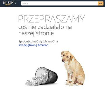 Komunikat o błędzie na stronie Amazon.pl