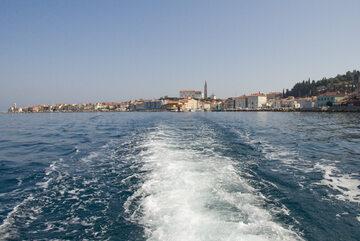 Krajobraz Zatoki Pirańskiej