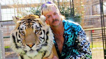 """Król tygrysów"""