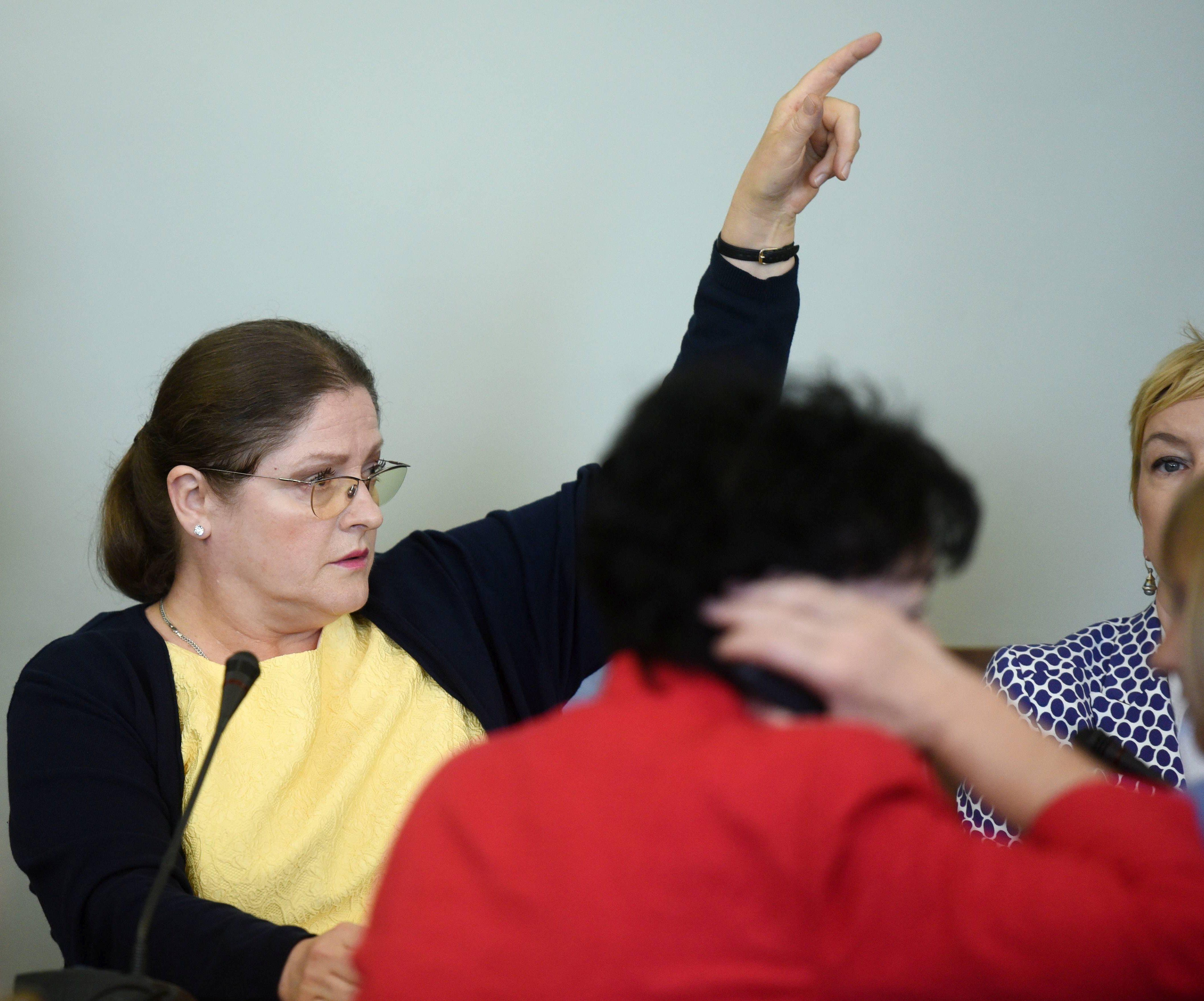 Krystyna Pawłowicz podczas posiedzenia połączonych komisji sejmowych