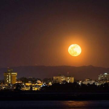 Księżyc Robaków