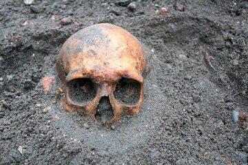 Ludzka czaszka odnaleziona przez archeologów, zdjęcie ilustracyjne