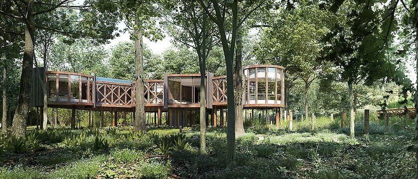 Luksusowy domek na drzewie