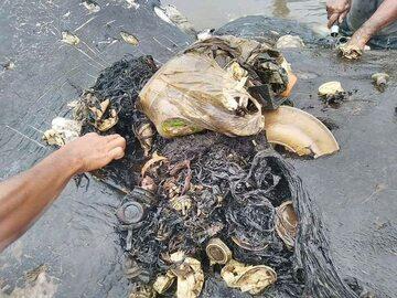 Martwy wieloryb w Indonezji