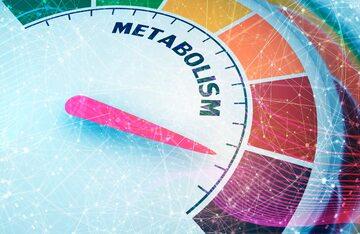 Metabolizm, zdjęcie ilustracyjne