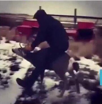 Mężczyzna ujeżdżający dzikiego jelenia