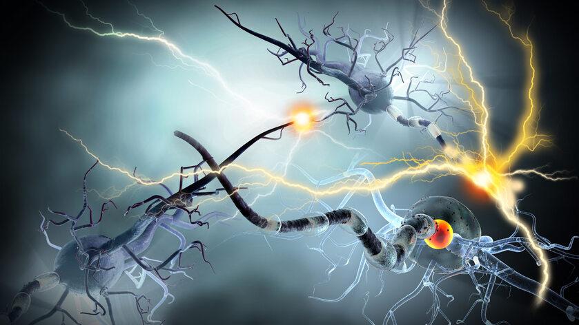 Mózg, choroba neurodegeneracyjna