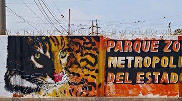 Mur wenezuelskiego zoo