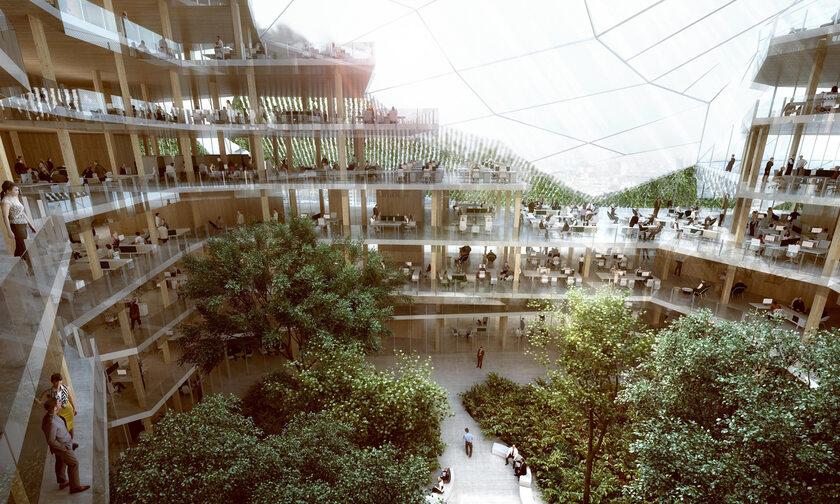 Największa w Europie konstrukcja z drewna