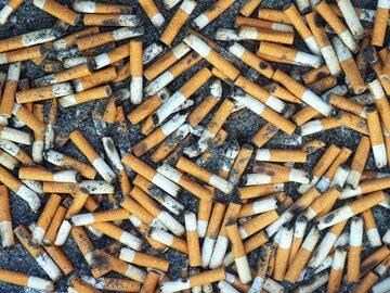 Niedopałki papierosów, zdjęcie ilustracyjne