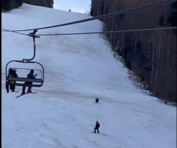 Niedźwiedź goniący narciarza