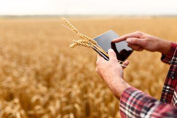 Nowoczesne rolnictwo