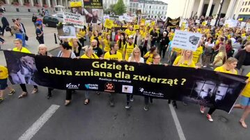 Obrońcy praw zwierząt wyszli na ulice Warszawy
